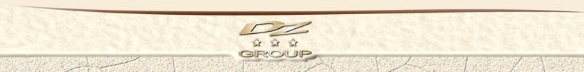 dzgroup